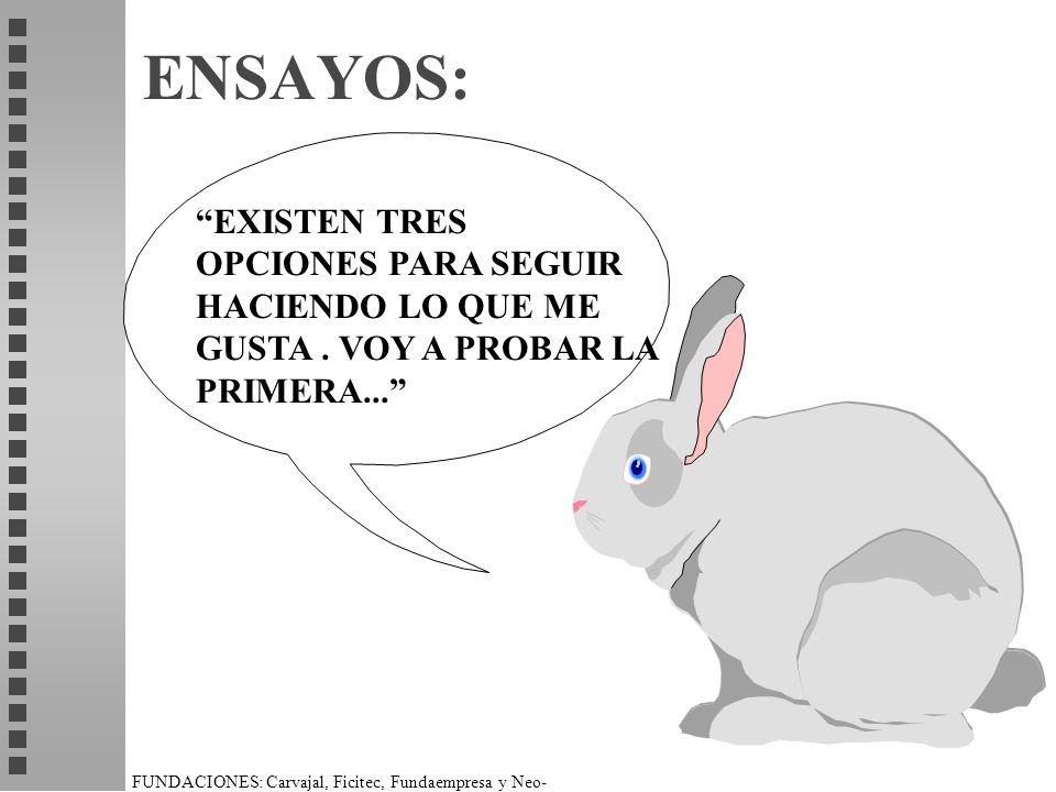ENSAYOS: EXISTEN TRES OPCIONES PARA SEGUIR HACIENDO LO QUE ME GUSTA . VOY A PROBAR LA PRIMERA...
