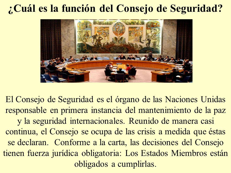 ¿Cuál es la función del Consejo de Seguridad