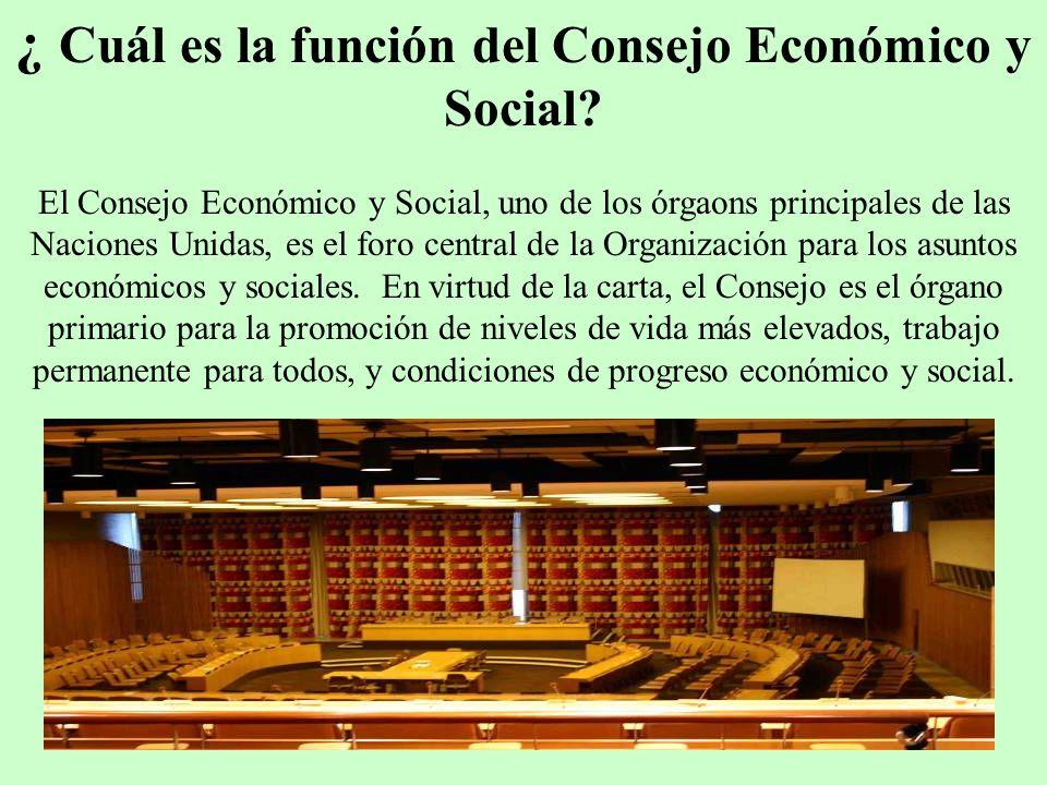 ¿ Cuál es la función del Consejo Económico y Social