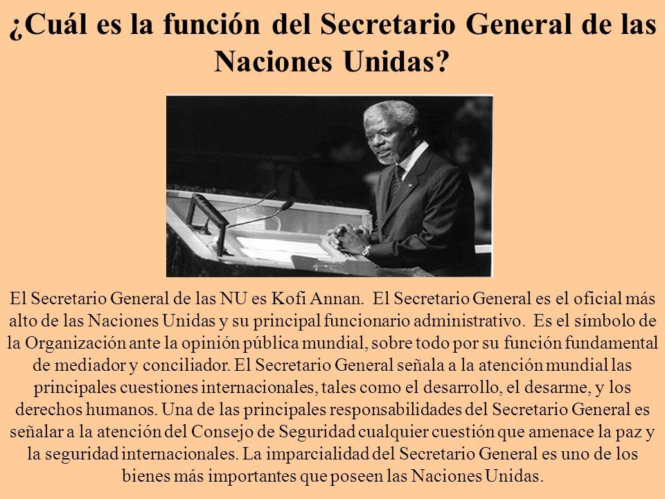¿Cuál es la función del Secretario General de las Naciones Unidas