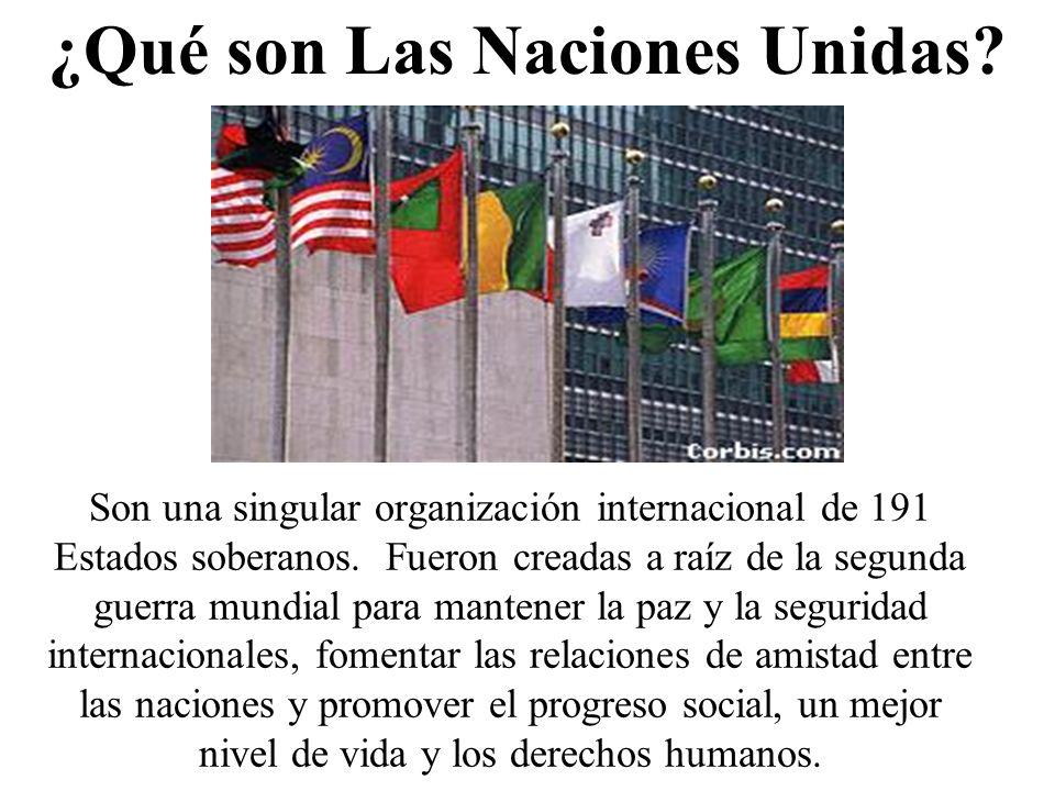 ¿Qué son Las Naciones Unidas