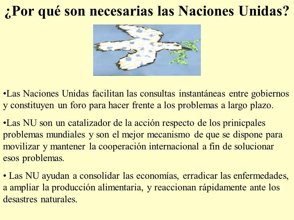 ¿Por qué son necesarias las Naciones Unidas