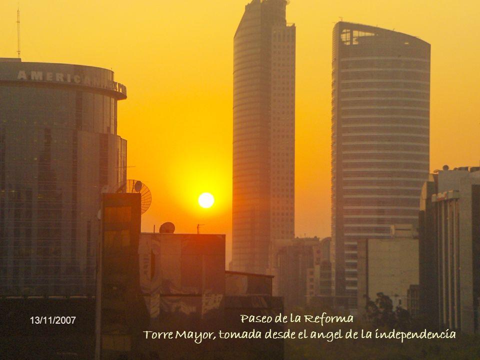 Torre Mayor, tomada desde el angel de la independencia