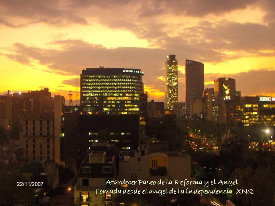 Atardecer Paseo de la Reforma y el Angel