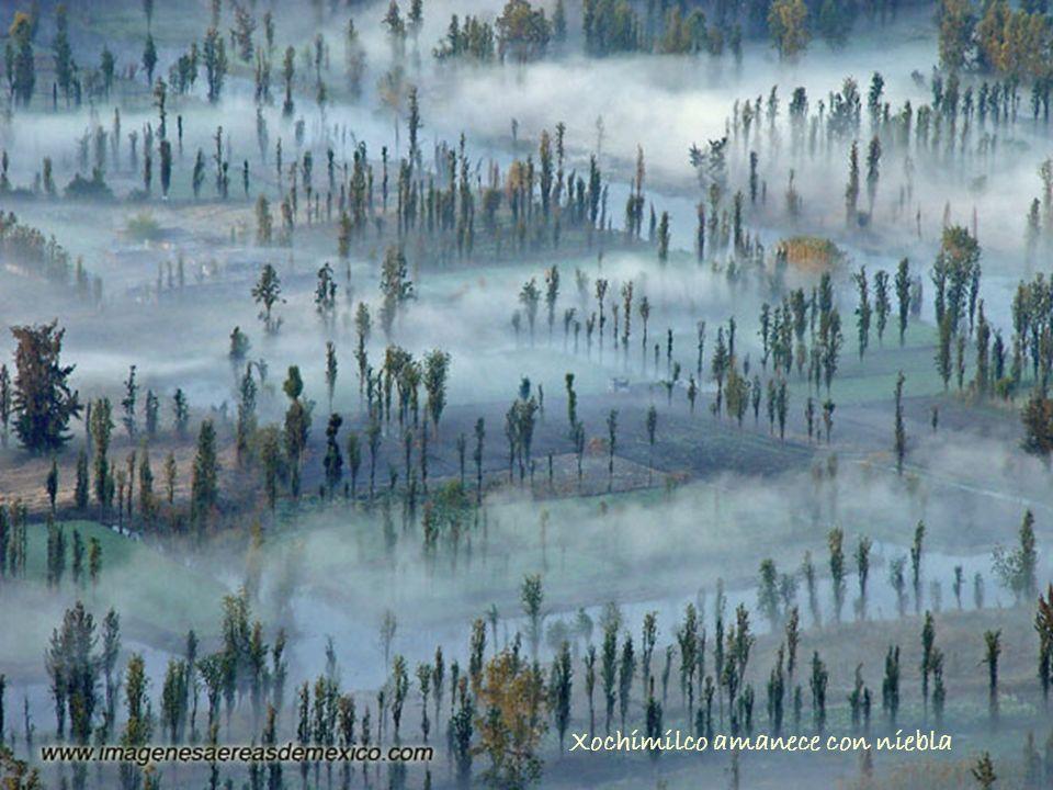 Xochimilco amanece con niebla