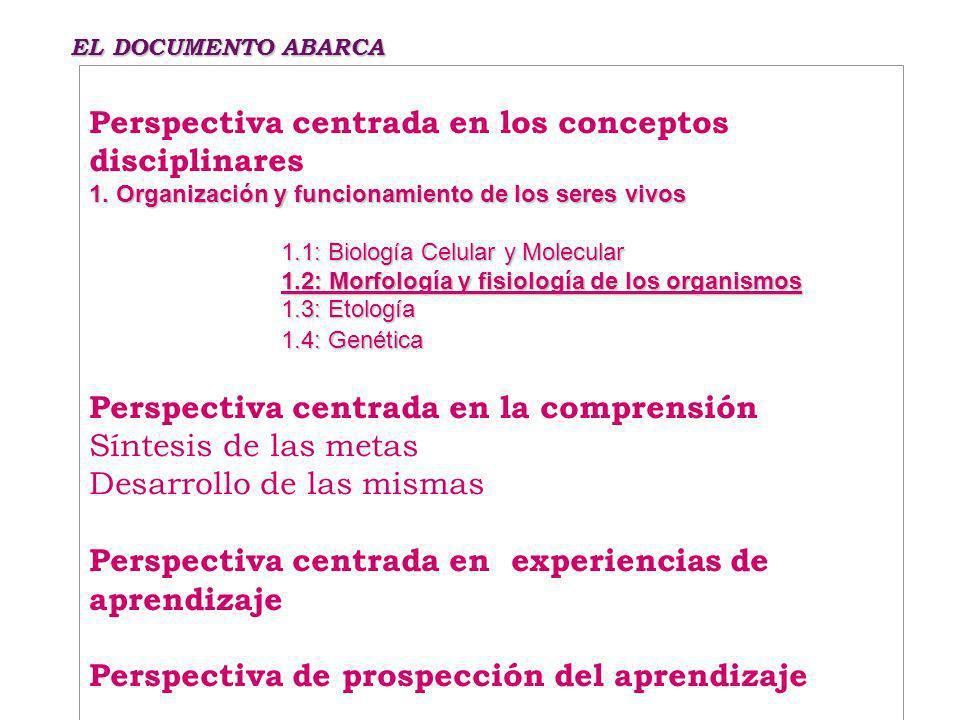 Perspectiva centrada en los conceptos disciplinares