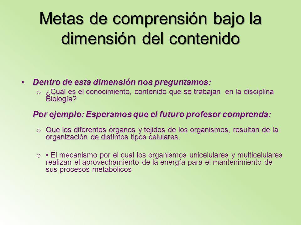Metas de comprensión bajo la dimensión del contenido