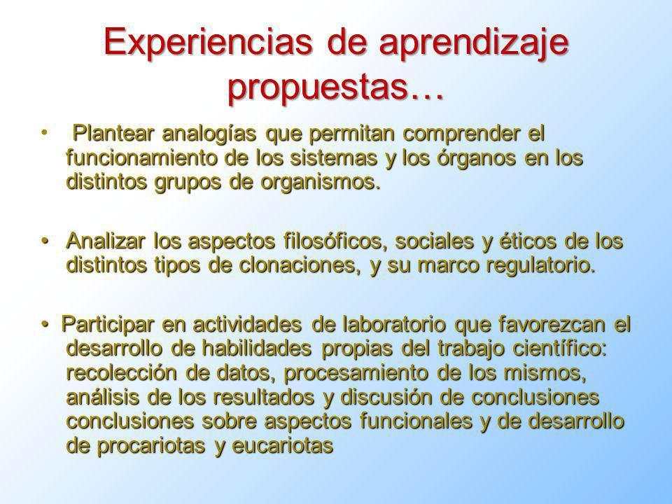 Experiencias de aprendizaje propuestas…