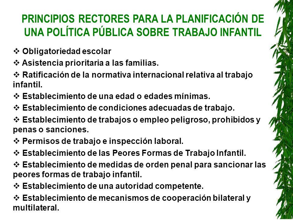 PRINCIPIOS RECTORES PARA LA PLANIFICACIÓN DE UNA POLÍTICA PÚBLICA SOBRE TRABAJO INFANTIL