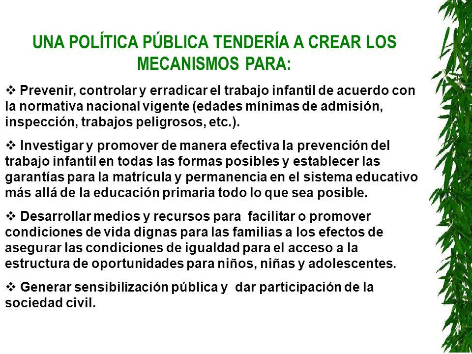 UNA POLÍTICA PÚBLICA TENDERÍA A CREAR LOS MECANISMOS PARA: