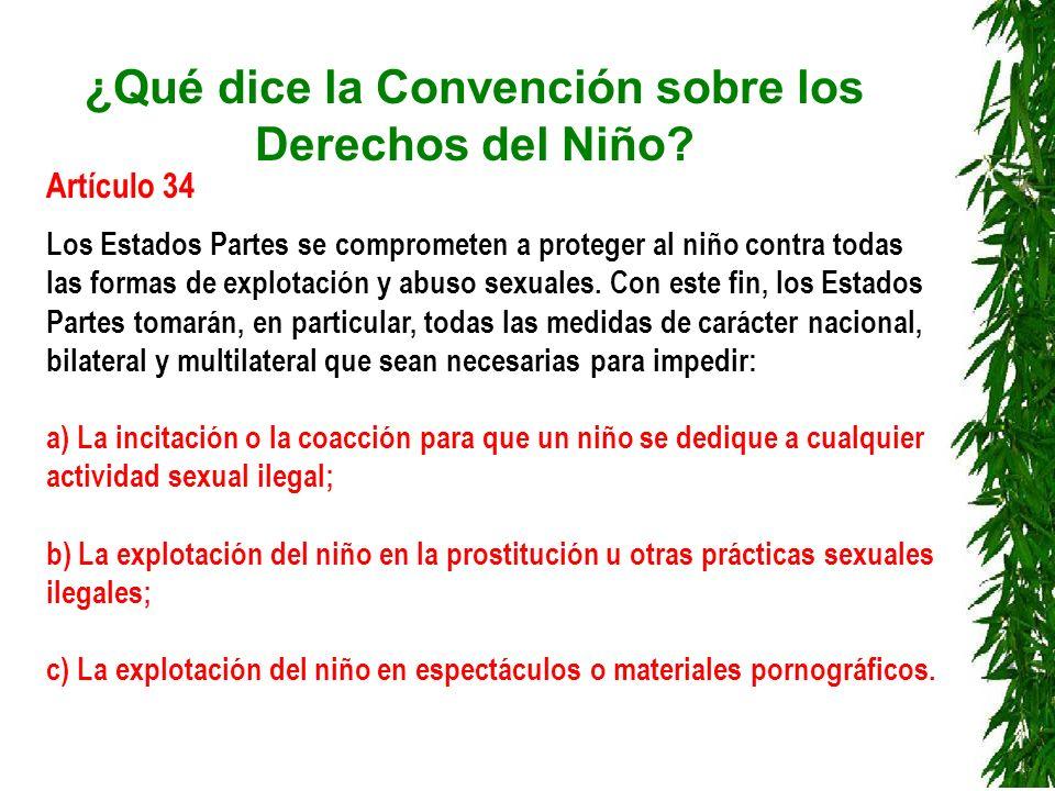 ¿Qué dice la Convención sobre los Derechos del Niño