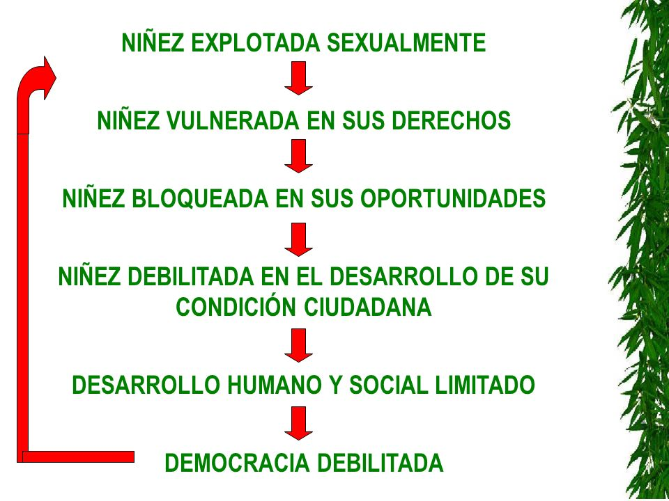 NIÑEZ EXPLOTADA SEXUALMENTE NIÑEZ VULNERADA EN SUS DERECHOS