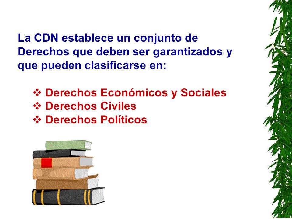 La CDN establece un conjunto de Derechos que deben ser garantizados y que pueden clasificarse en: