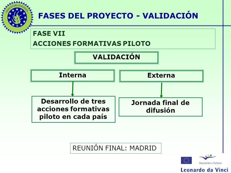 FASES DEL PROYECTO - VALIDACIÓN