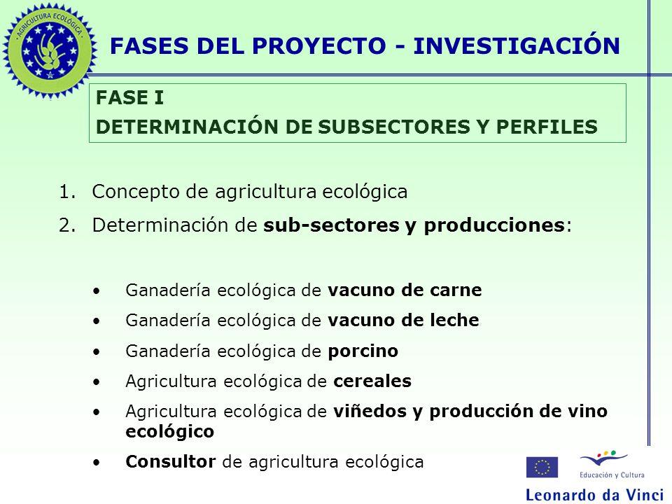 FASES DEL PROYECTO - INVESTIGACIÓN