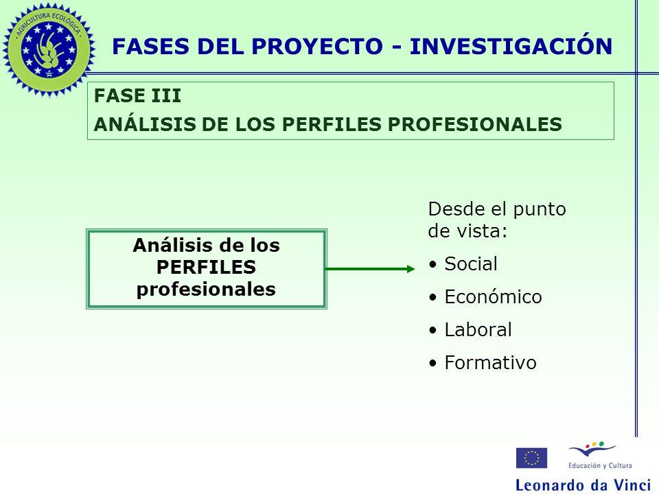 Análisis de los PERFILES profesionales