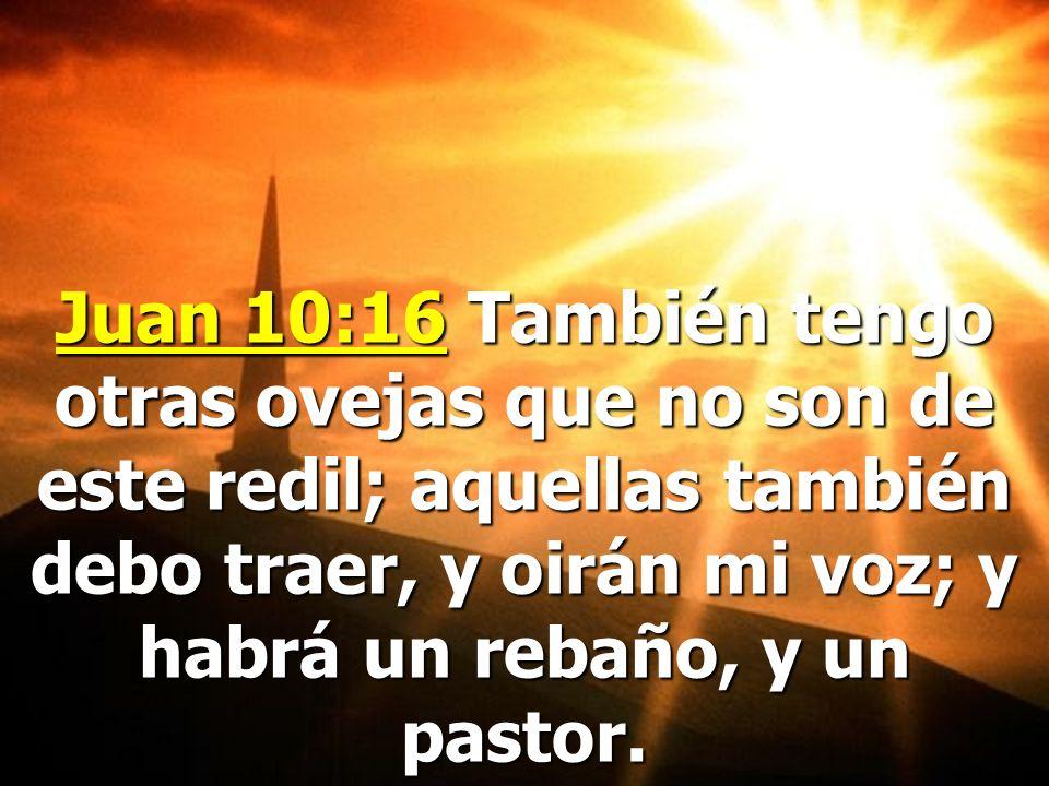 Juan 10:16 También tengo otras ovejas que no son de este redil; aquellas también debo traer, y oirán mi voz; y habrá un rebaño, y un pastor.