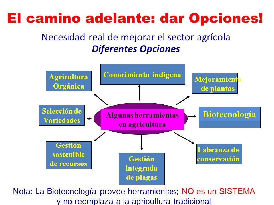 Necesidad real de mejorar el sector agrícola Diferentes Opciones