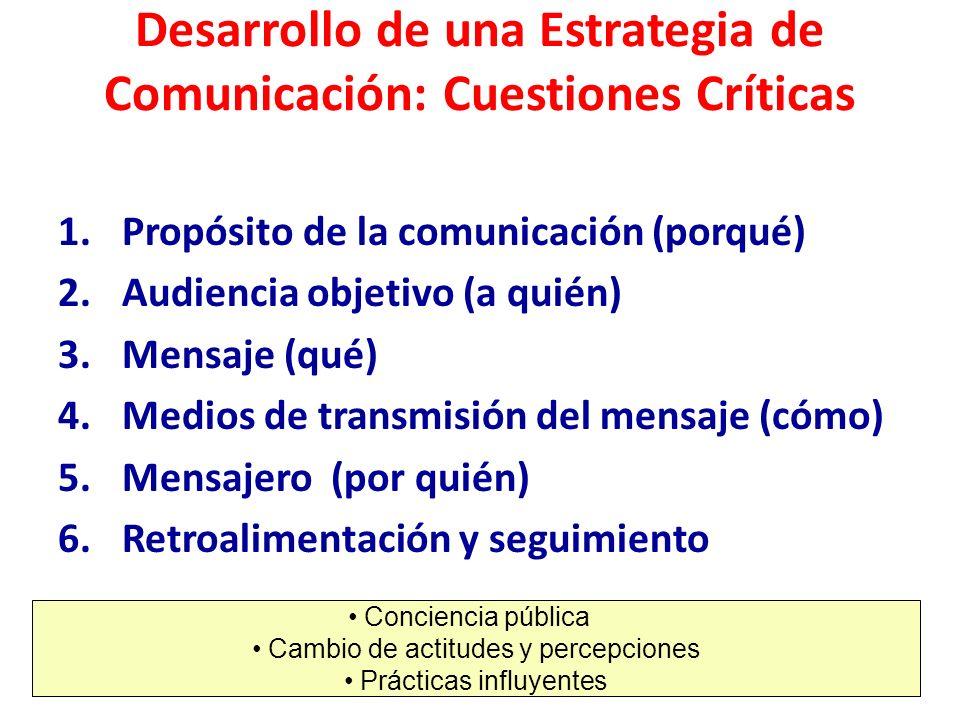 Desarrollo de una Estrategia de Comunicación: Cuestiones Críticas