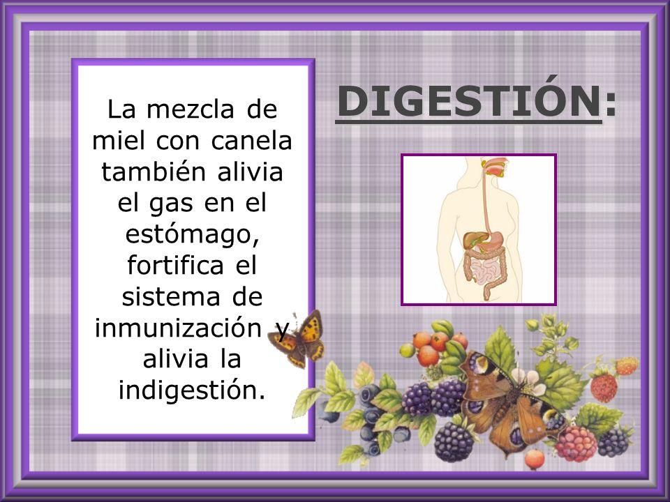 La mezcla de miel con canela también alivia el gas en el estómago, fortifica el sistema de inmunización y alivia la indigestión.