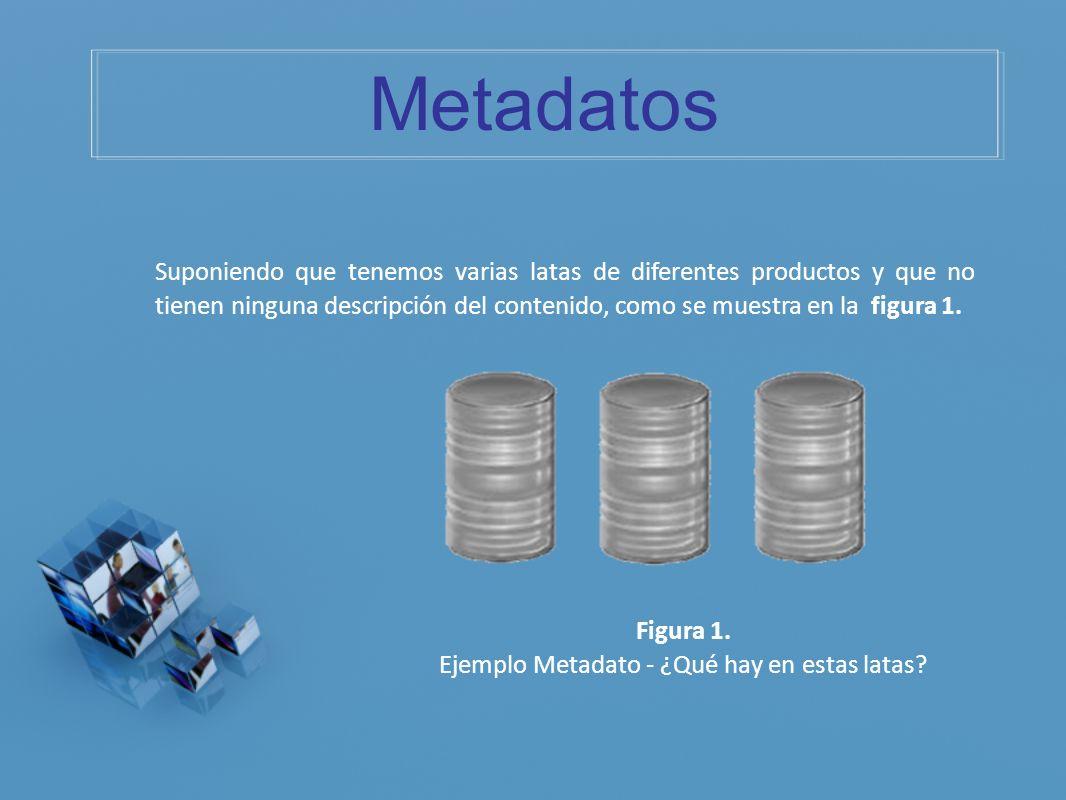 Ejemplo Metadato - ¿Qué hay en estas latas