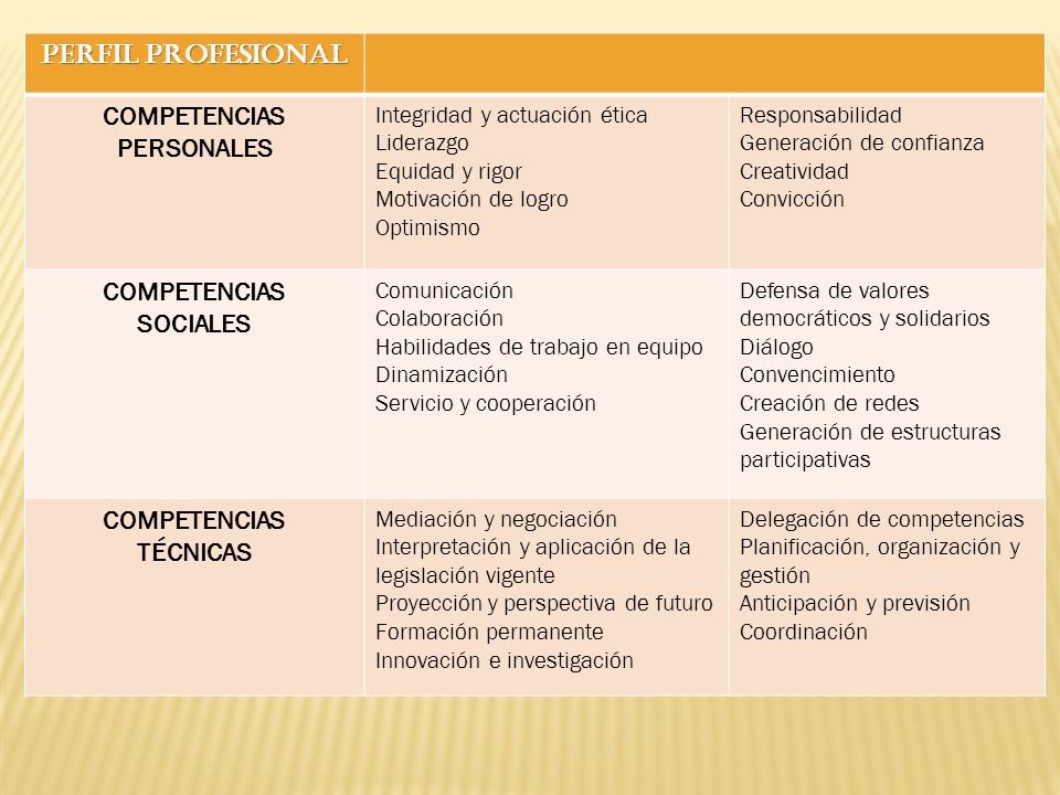 PERFIL PROFESIONAL COMPETENCIAS PERSONALES SOCIALES TÉCNICAS