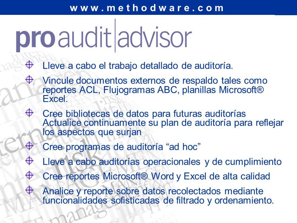 Lleve a cabo el trabajo detallado de auditoría.
