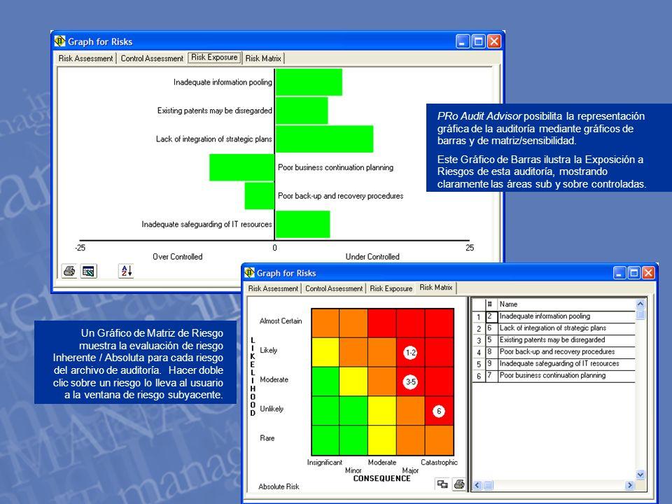 PRo Audit Advisor posibilita la representación gráfica de la auditoría mediante gráficos de barras y de matriz/sensibilidad.