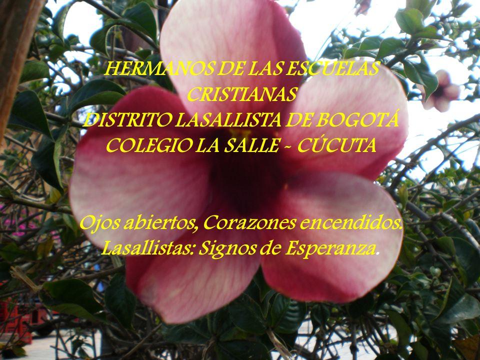 HERMANOS DE LAS ESCUELAS CRISTIANAS DISTRITO LASALLISTA DE BOGOTÁ