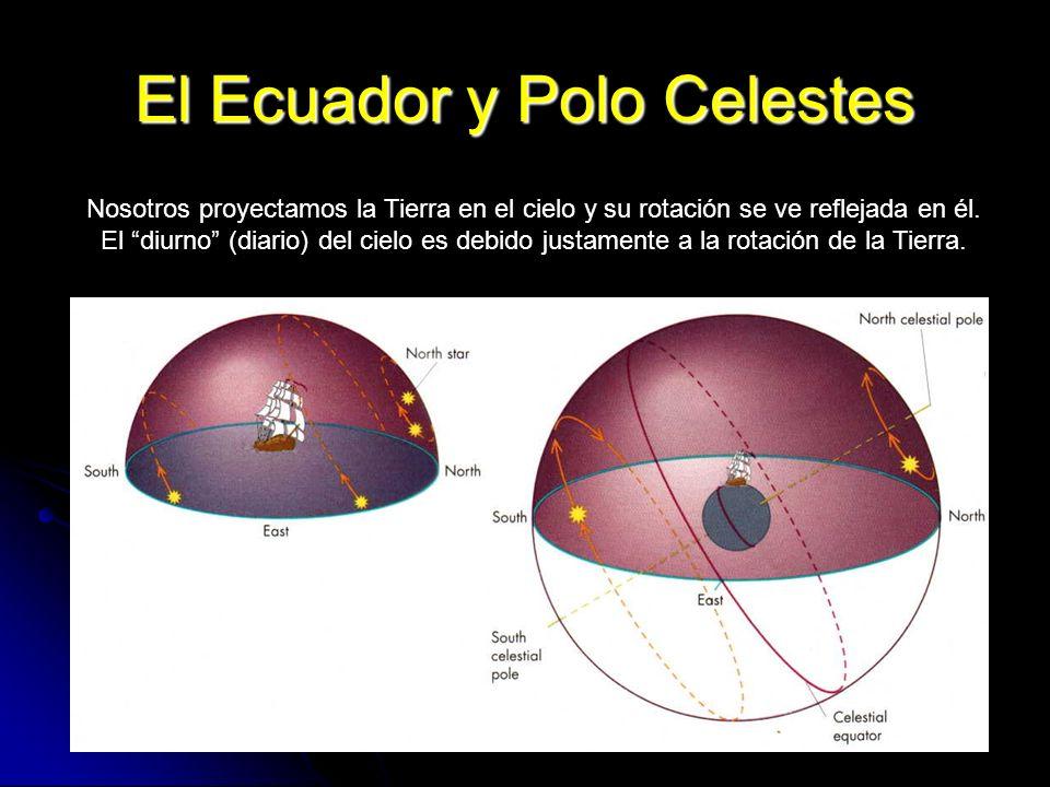 El Ecuador y Polo Celestes