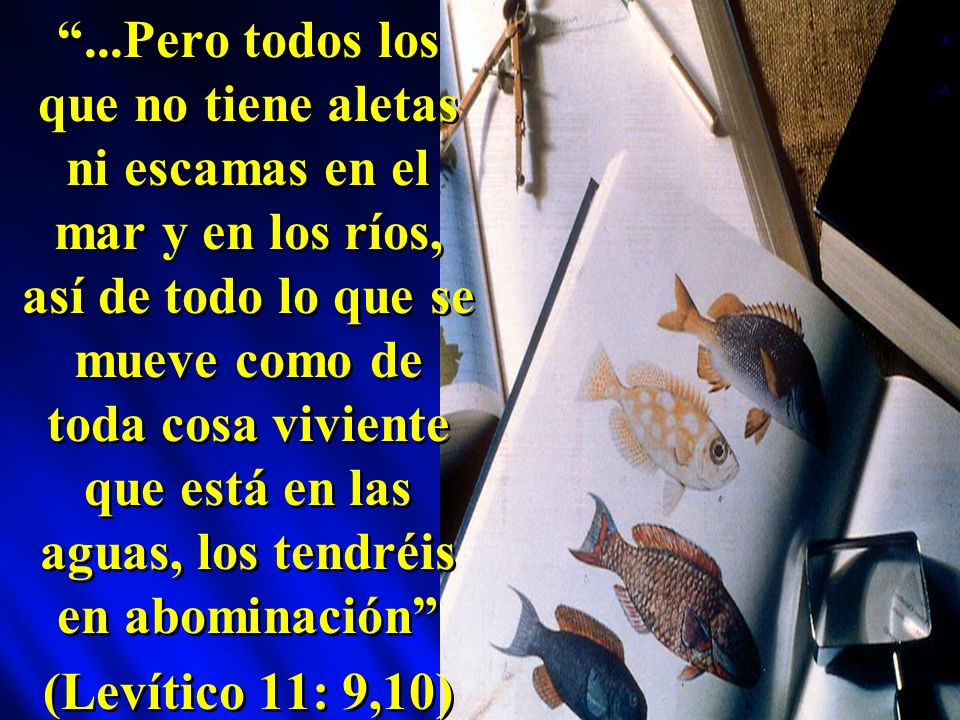 ...Pero todos los que no tiene aletas ni escamas en el mar y en los ríos, así de todo lo que se mueve como de toda cosa viviente que está en las aguas, los tendréis en abominación