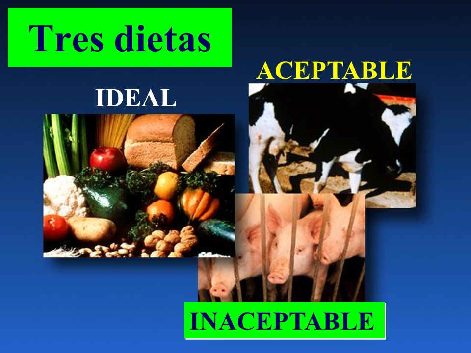 Tres dietas ACEPTABLE IDEAL INACEPTABLE