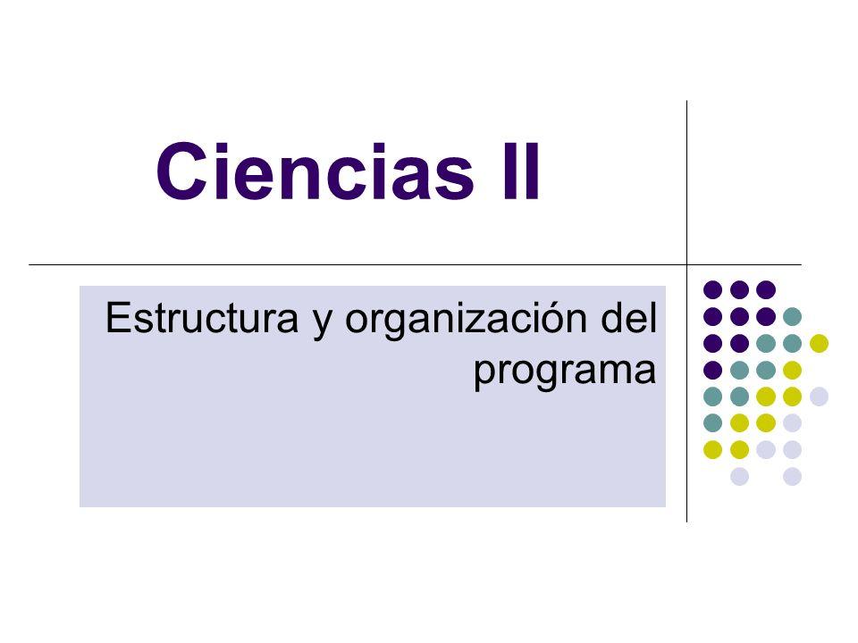Estructura y organización del programa