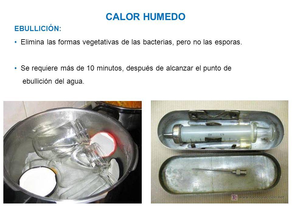 CALOR HUMEDO EBULLICIÓN: