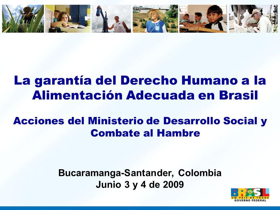 La garantía del Derecho Humano a la Alimentación Adecuada en Brasil