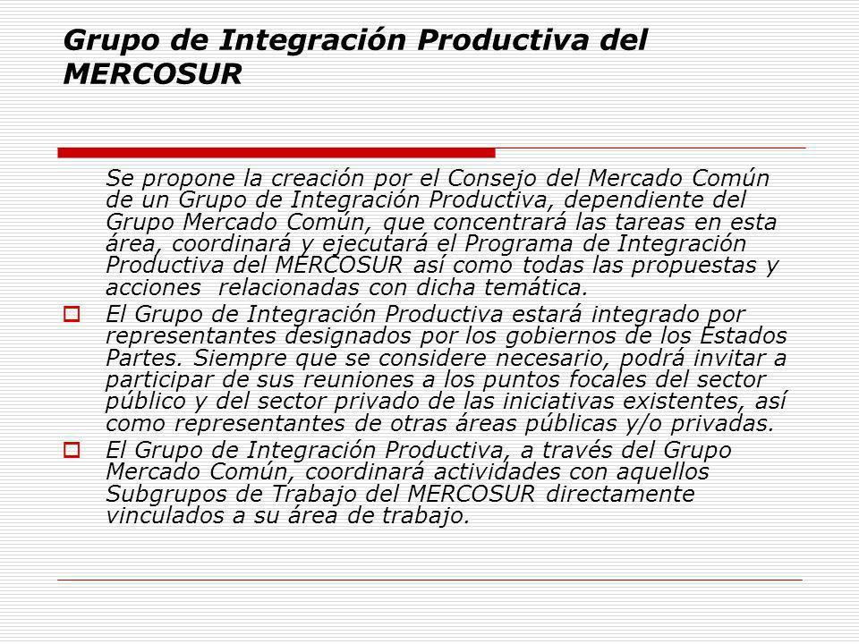 Grupo de Integración Productiva del MERCOSUR