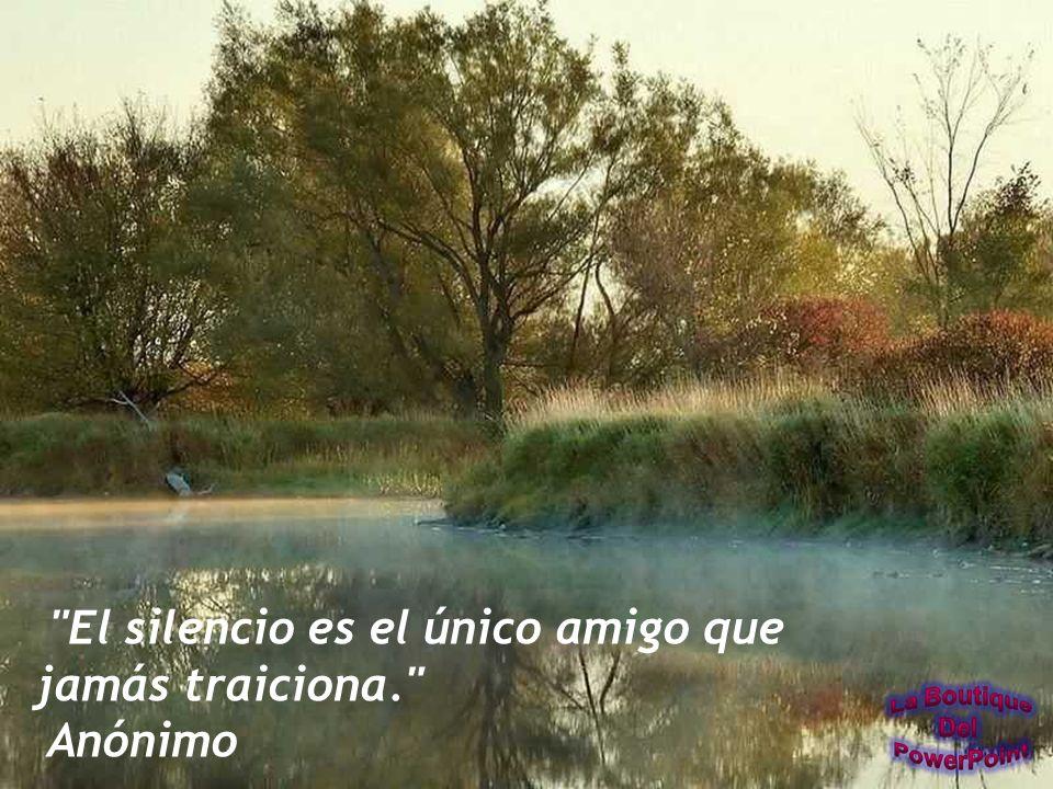 El silencio es el único amigo que jamás traiciona.