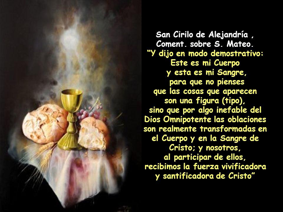 San Cirilo de Alejandría , Coment. sobre S. Mateo.
