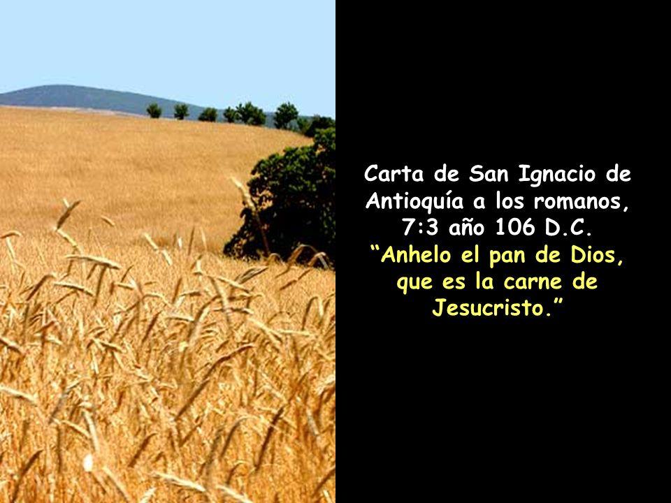 Carta de San Ignacio de Antioquía a los romanos, 7:3 año 106 D.C.