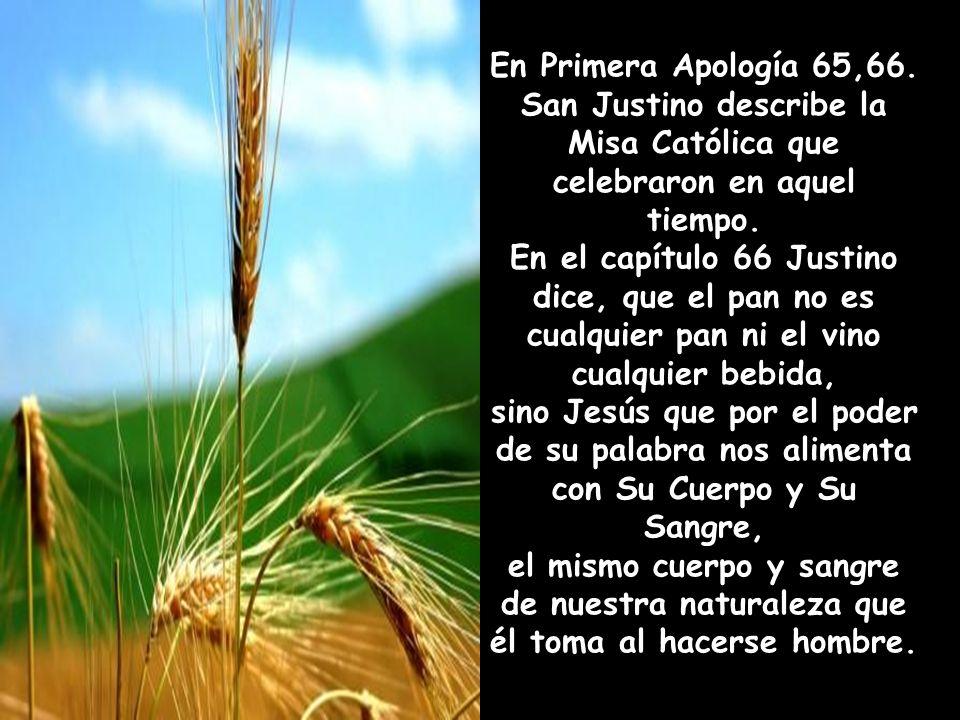 San Justino describe la Misa Católica que celebraron en aquel tiempo.