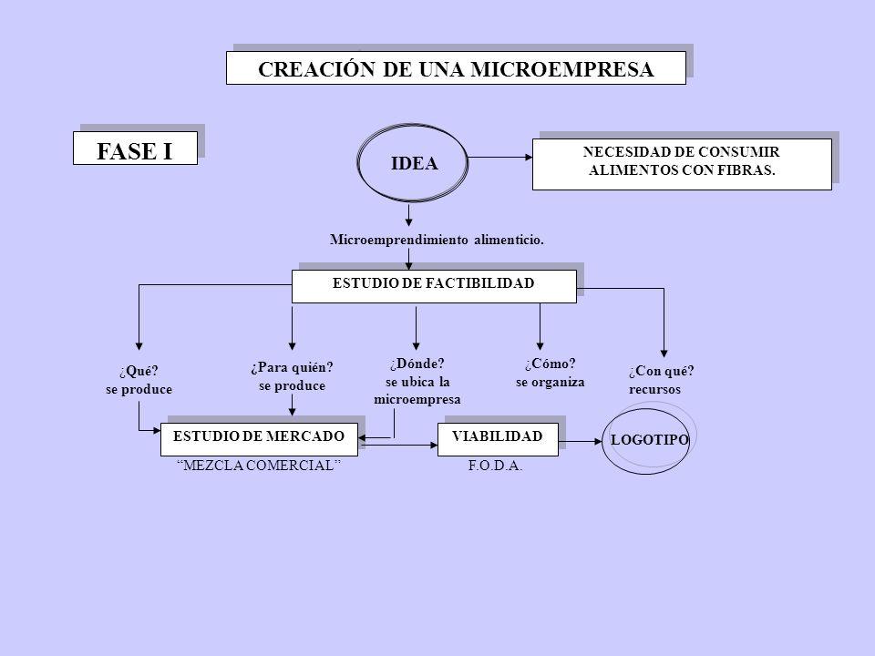 CREACIÓN DE UNA MICROEMPRESA ESTUDIO DE FACTIBILIDAD