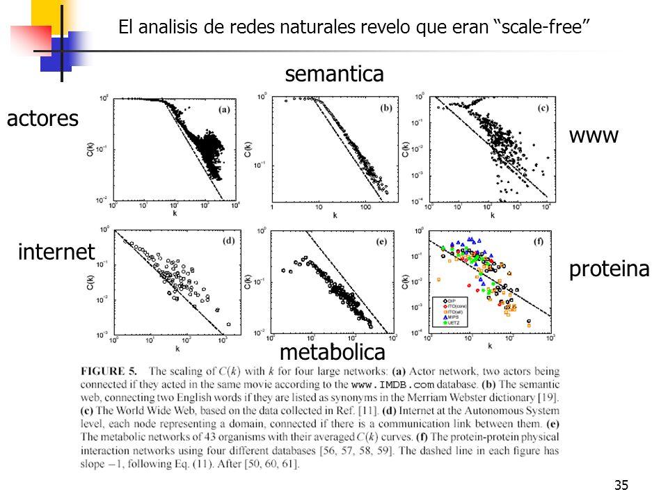 semantica actores www internet proteina metabolica