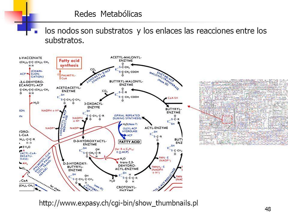 Redes Metabólicas los nodos son substratos y los enlaces las reacciones entre los substratos.