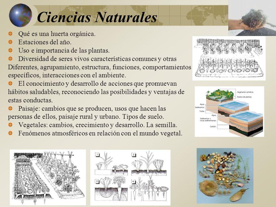 Ciencias Naturales Qué es una huerta orgánica. Estaciones del año.