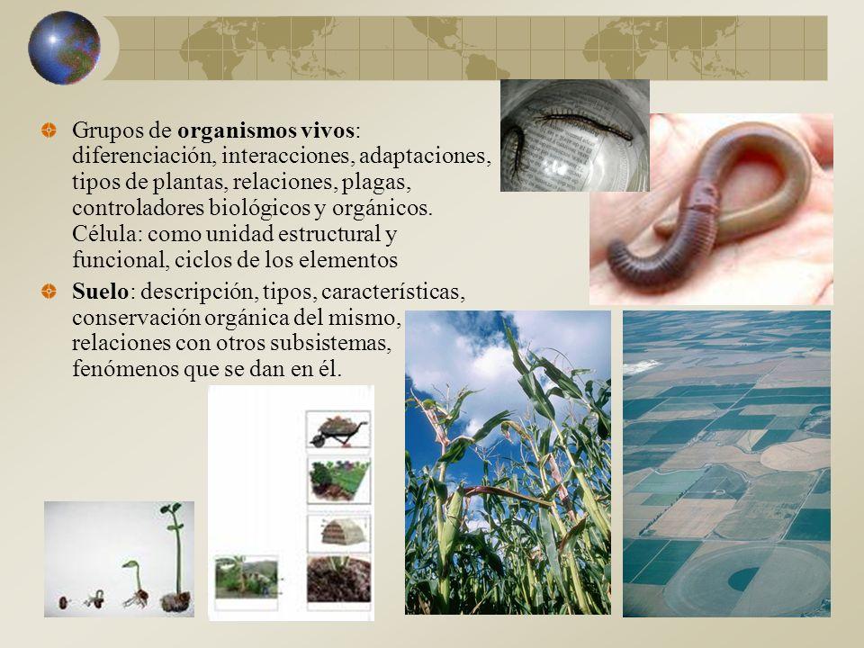 Grupos de organismos vivos: diferenciación, interacciones, adaptaciones, tipos de plantas, relaciones, plagas, controladores biológicos y orgánicos. Célula: como unidad estructural y funcional, ciclos de los elementos