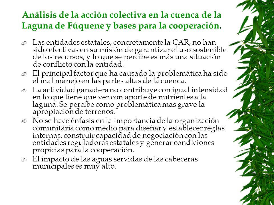 Análisis de la acción colectiva en la cuenca de la Laguna de Fúquene y bases para la cooperación.