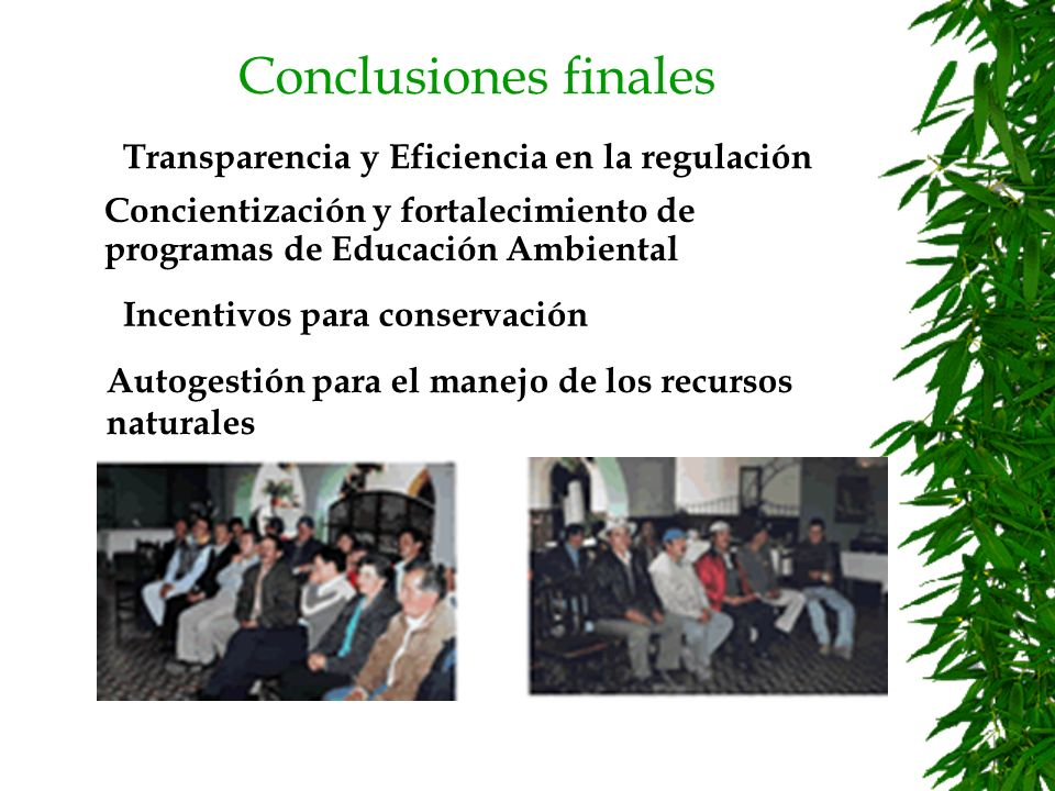 Conclusiones finales Transparencia y Eficiencia en la regulación