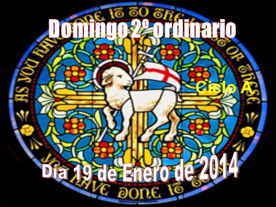 Domingo 2º ordinario Ciclo A Día 19 de Enero de 2014