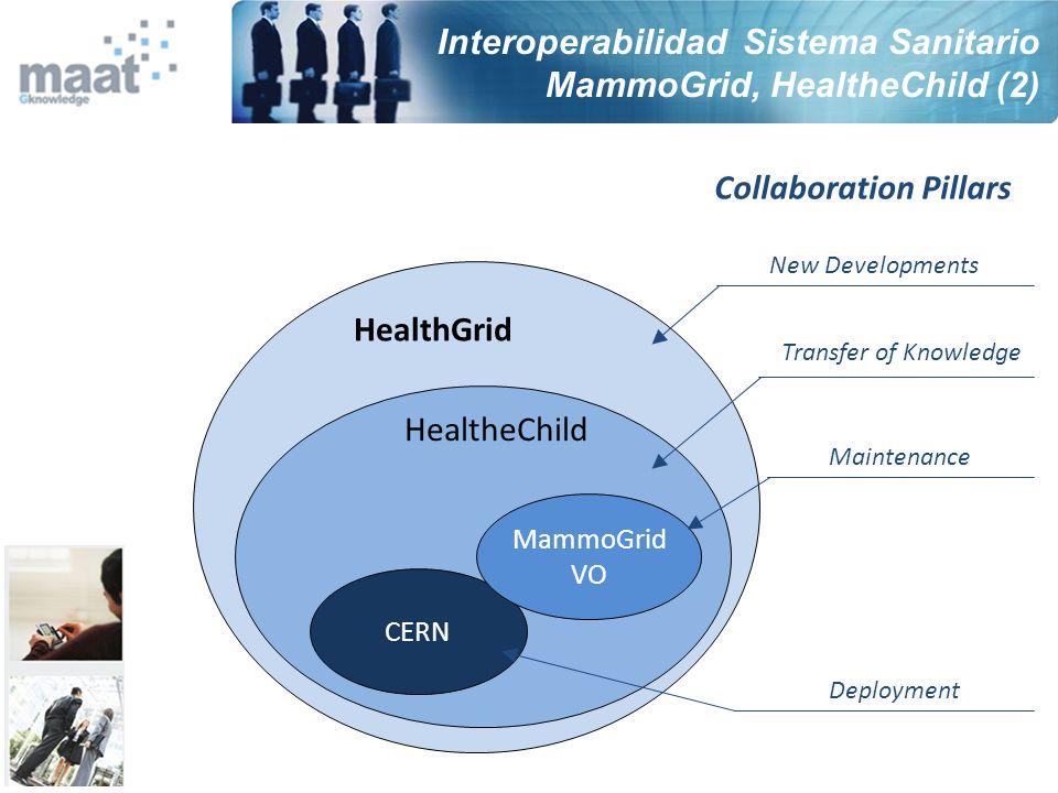 Interoperabilidad Sistema Sanitario MammoGrid, HealtheChild (2)