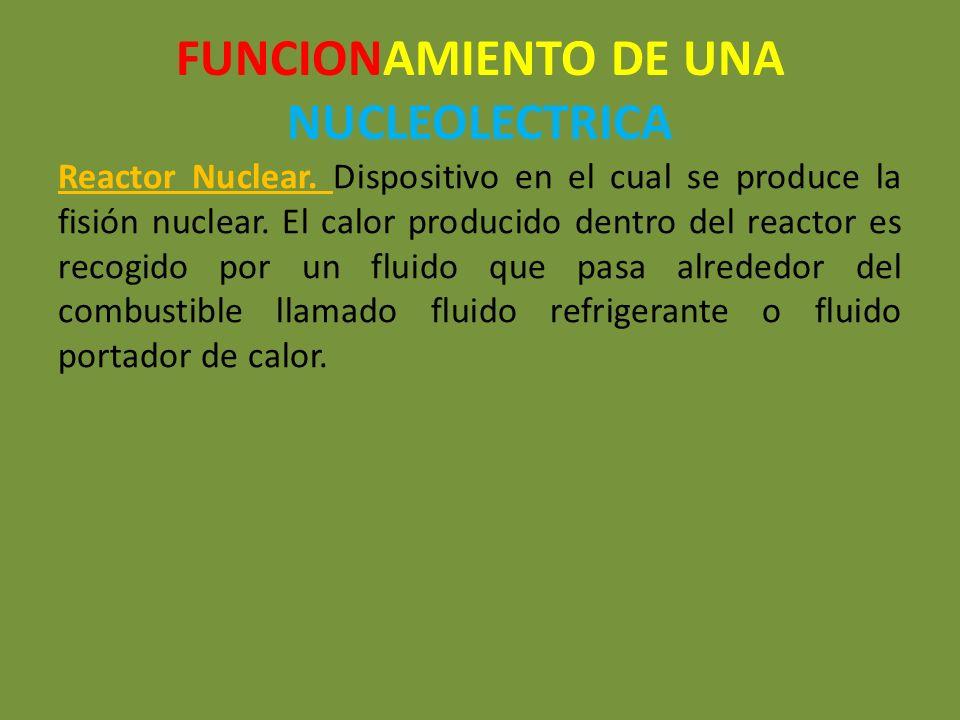 FUNCIONAMIENTO DE UNA NUCLEOLECTRICA
